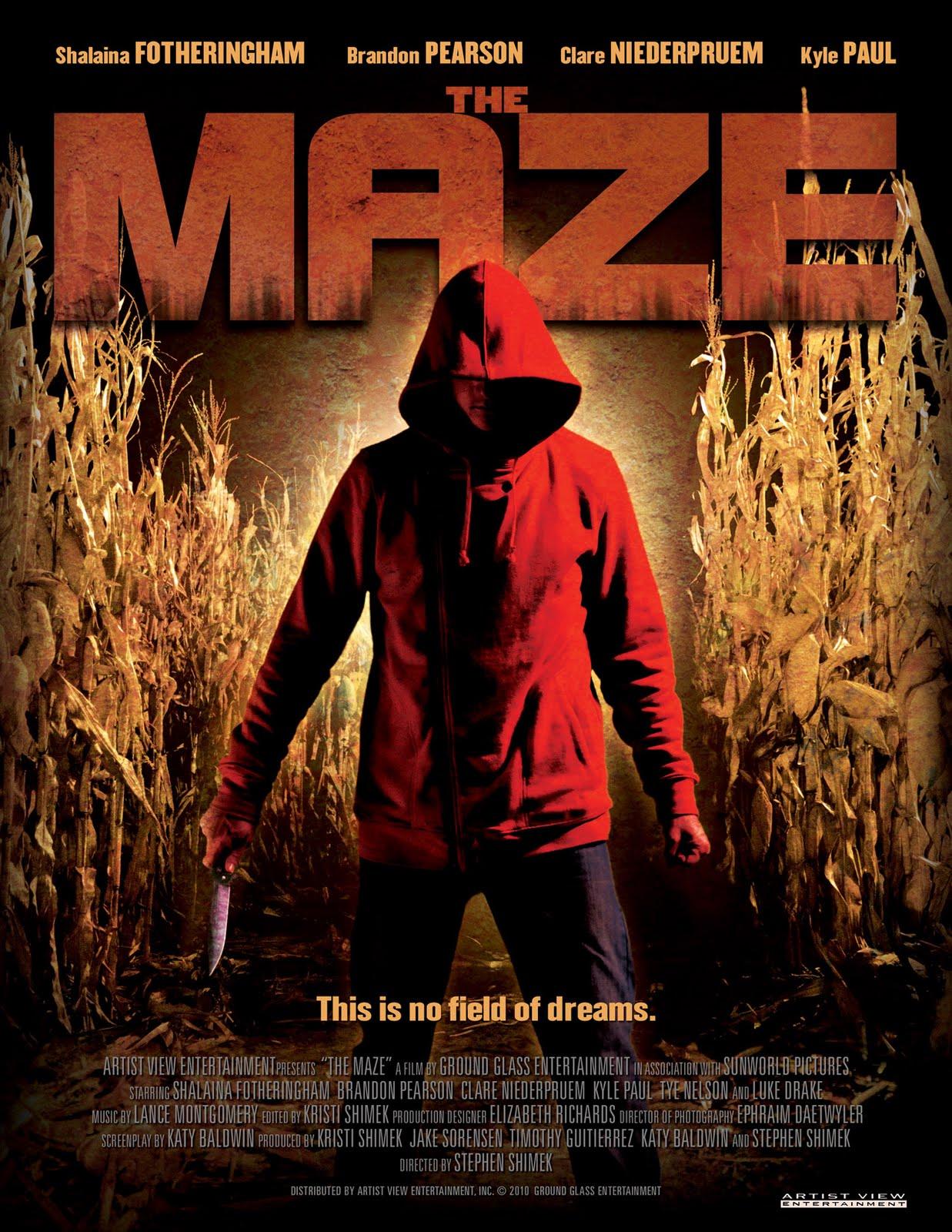 the-maze.jpg