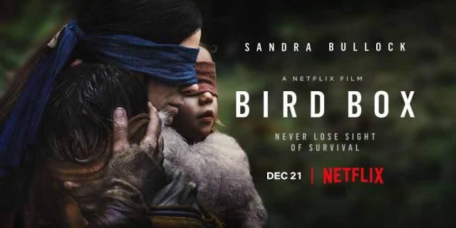 bird_box_top